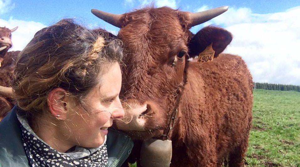 ethologie vaches