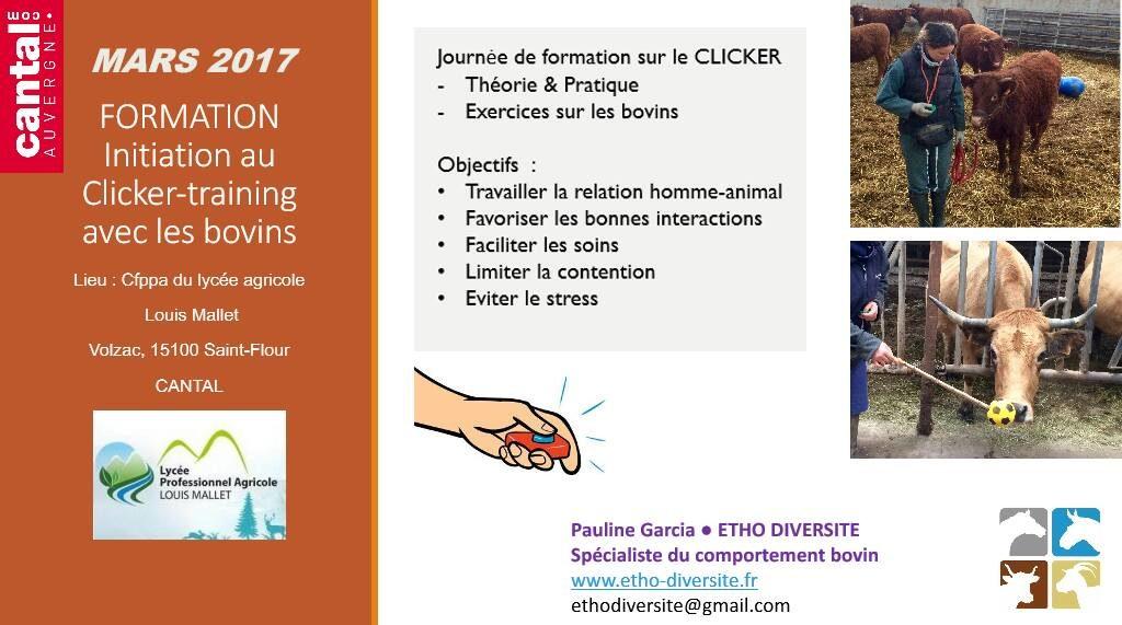 formation clicker training ethologie